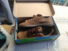 Zapato Molekinho Nuevo