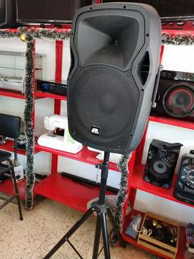 "Cabina amplificada 15"" pro Audio"