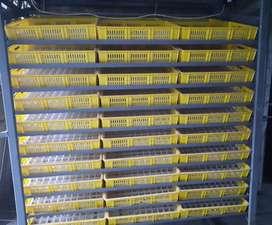 Incubadora De Aves, capacidad 5280 Huevos