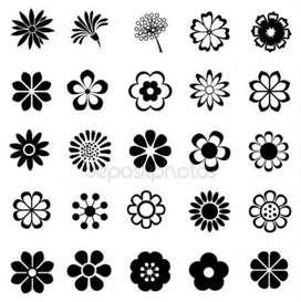 Imagenes vectorisadas
