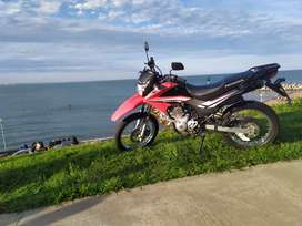 Honda Xr150 Rally