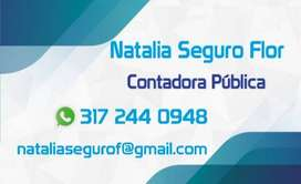 SERVICIOS DE CONTABILIDAD, CONTADOR PUBLICO