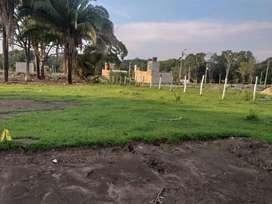Vendo Lote 84 mts cuadrados en Carmen de Apicala a estrenar