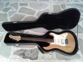 Hard Case Guardian Stratocaster