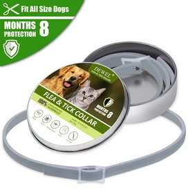 Collar Antipulgas Gatos 8 Meses Protección Total