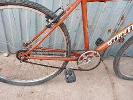 BIcicleta Halley sin cambio