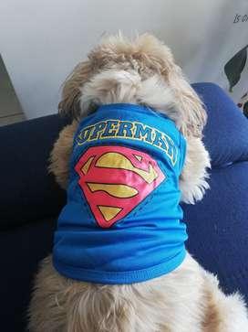 camiseta perro talla S