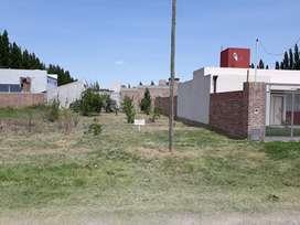 Vendo terreno en Plottier b. ECORD 1