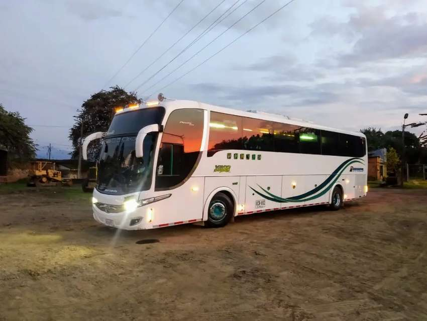 Alquilamos buses