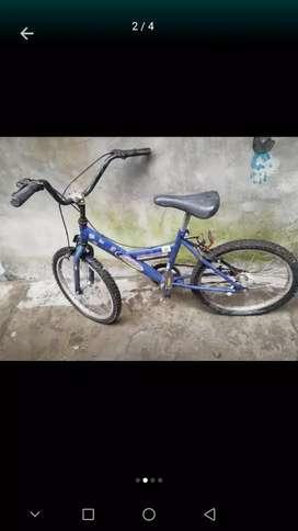 Bicicleta rodado 16 y 20