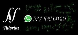 Apoyo En Talleres Trabajos Exámenes Cálculo Física y Más