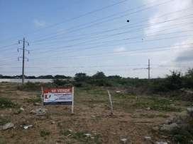 Se Vende Terreno Desvío Salitre a Samborondón