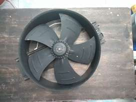 Extractor industrial motor sunflow