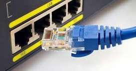 venta de cable de red categoria 6 para internet