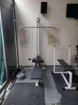 Polea Dorsalera Y Remo Con 100kg Titanio Fitness Usada