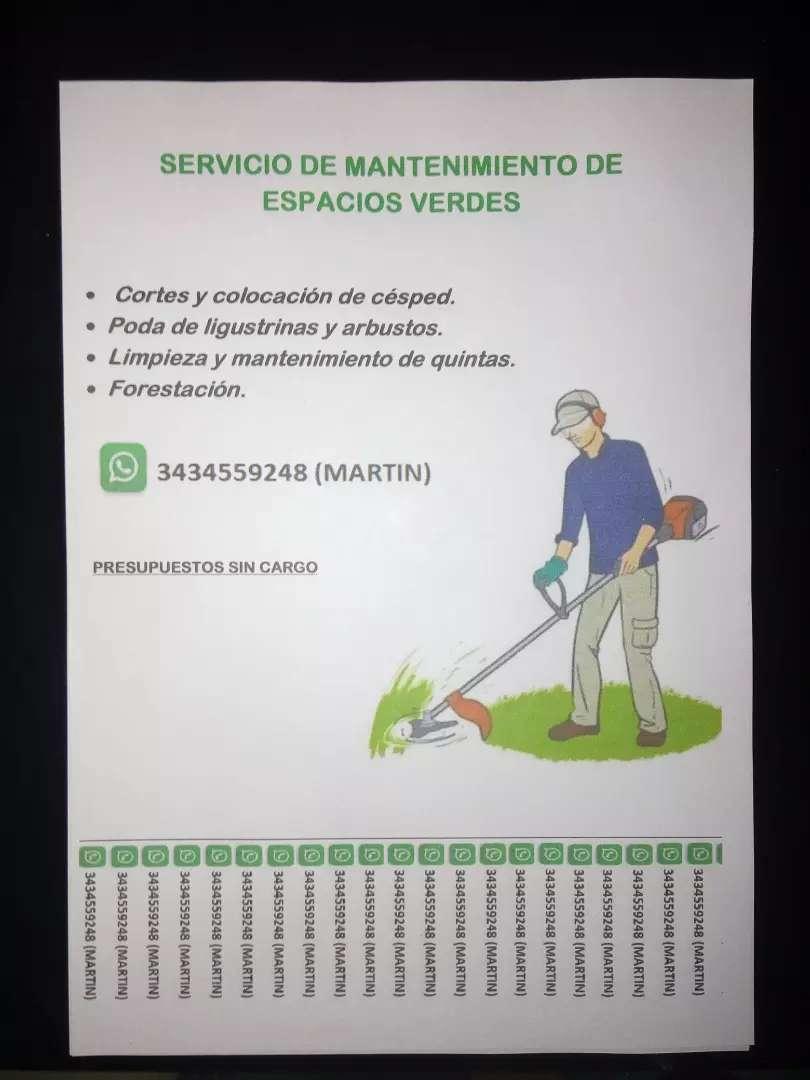 Mantenimiento de espacios verdes. 0
