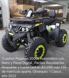 Cuadron Pegasso 200cc Automatico con Panel digital y parilla recubierta