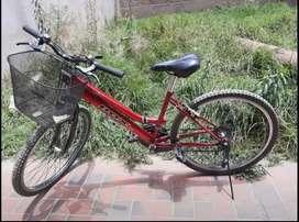 Bicicleta Box para dama