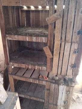 En venta jaulas de conejos
