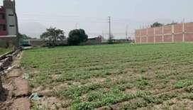 Vendo terreno de 5000 m2 frente a la carretera Carapongo