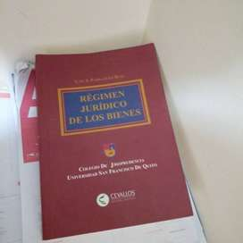 Régimen Jurídico de los Bienes (Parraguez)
