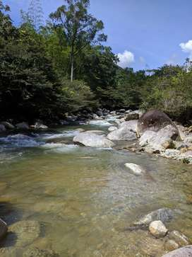 Lote en el municipio  de Alejandríacon acceso a rio