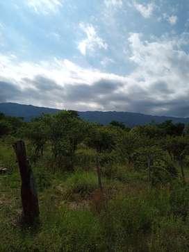 Terreno en Cerro de Oro S.L.