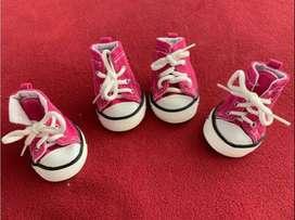 Zapato tipo Converse para Perrita