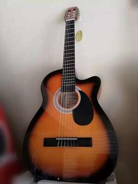 Guitarra FREEDOM Acústica