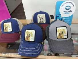 Gorras de animales y colores