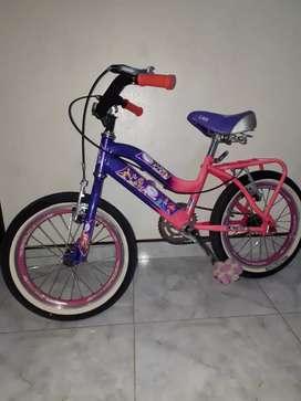 Bicicleta niña Rin 16
