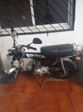 MOTO DAX 70cc