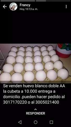 Venta de huevos a domicilio