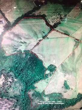 Terreno de 6,4 hectareas en el Inga Bajo