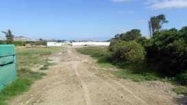 Venta de Terreno en Nuevo Chimbote - 00738