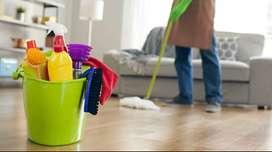 Buscando Limpiadora