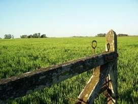 Campo de 18,97 hectáreas en Entre Rios