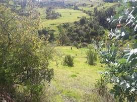 Venta de Lote en el municipio de Tota, luga muy tranquilo, con vista al Río y cerca al Lago de Tota