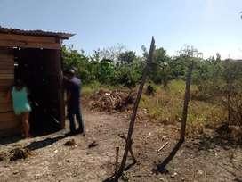 Lostes económicos en Barranquilla de 3.5*14metros y 7*14metros