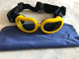Gafas para perro pequeño