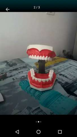 Dentadura cosmética