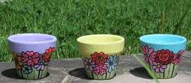 Macetas de Arcilla Pintadas a mano para Cactus y Suculentas
