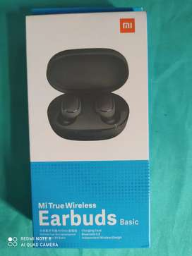 Earbuds basic