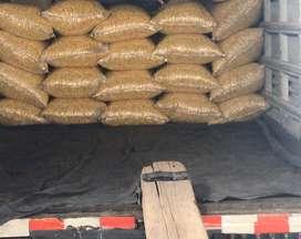 Mote ,maiz  granos secos