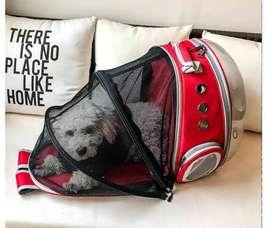 Mochila para transportar mascota gato cachorro.