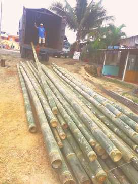Vendo bambú