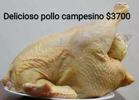 Venta d pollo campesino
