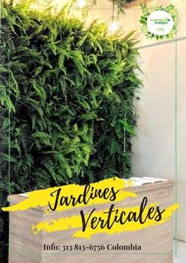 Jardines verticales, transforma y genera oxígeno en tus espacios