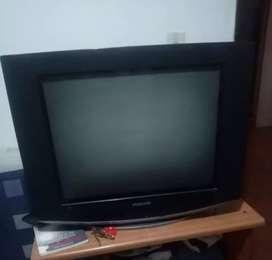 Televisor de Mesa