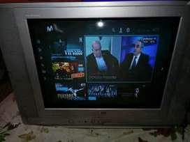 TELEVISOR COLOR 21 PULGADAS